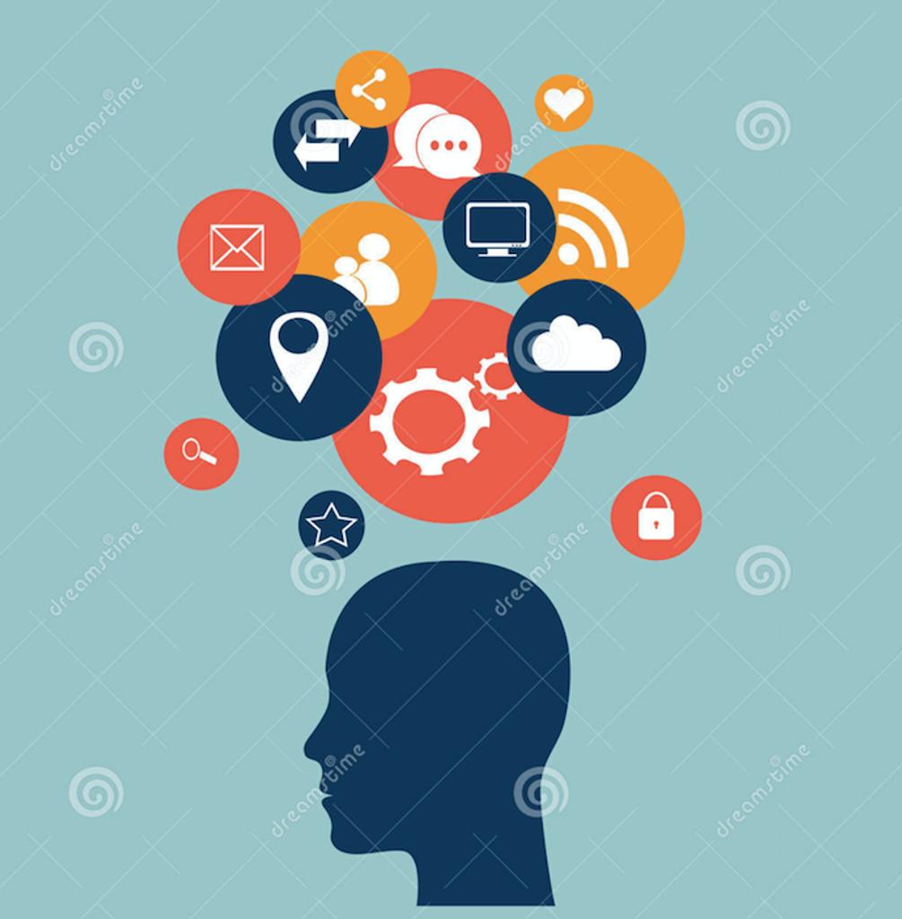 Head Of Social Media