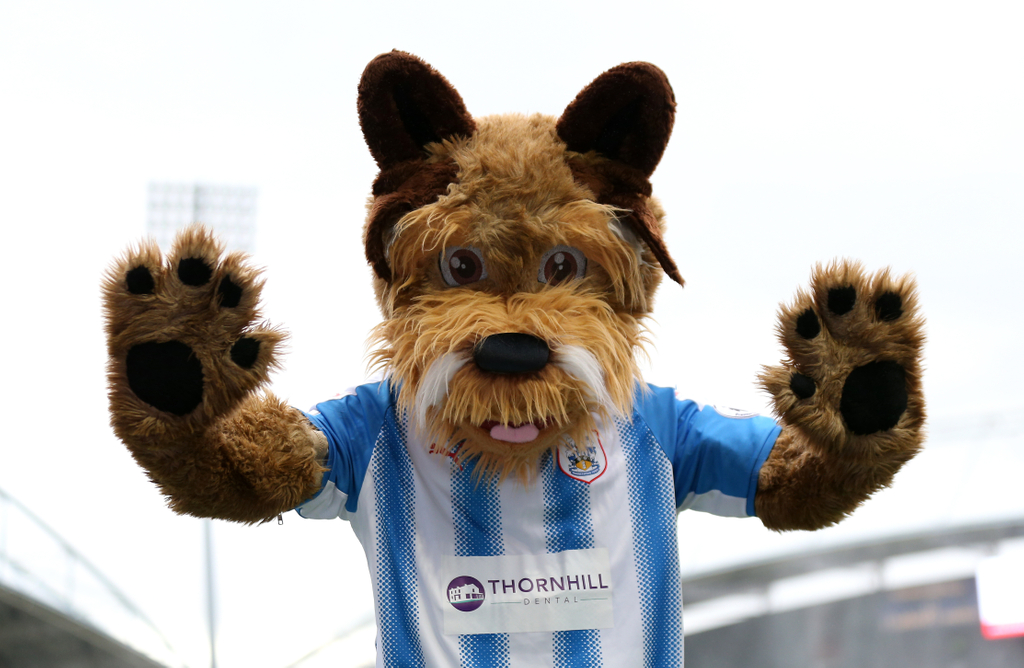 Huddersfield Terry the Terrier Mascot