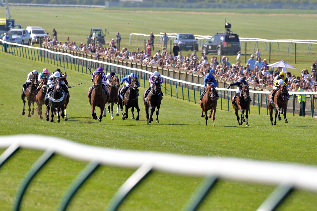1000 guineas day