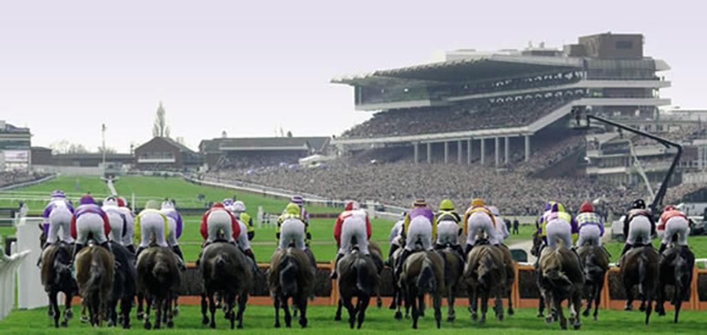 Cheltenham Festival Race