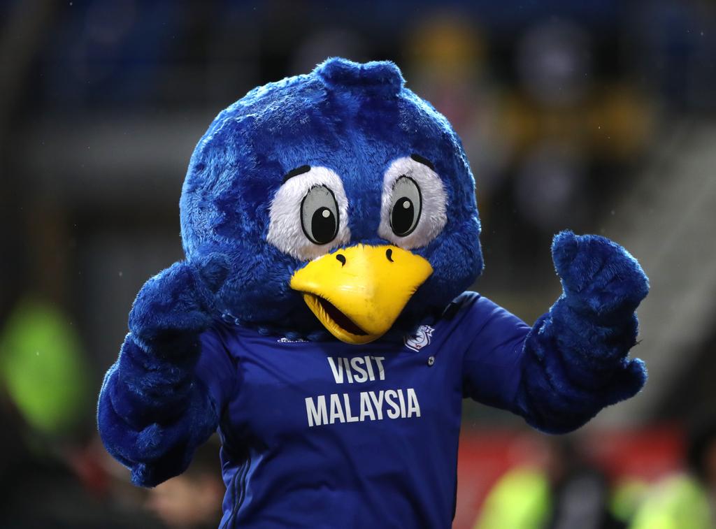 Cardiff Bluebird Mascot