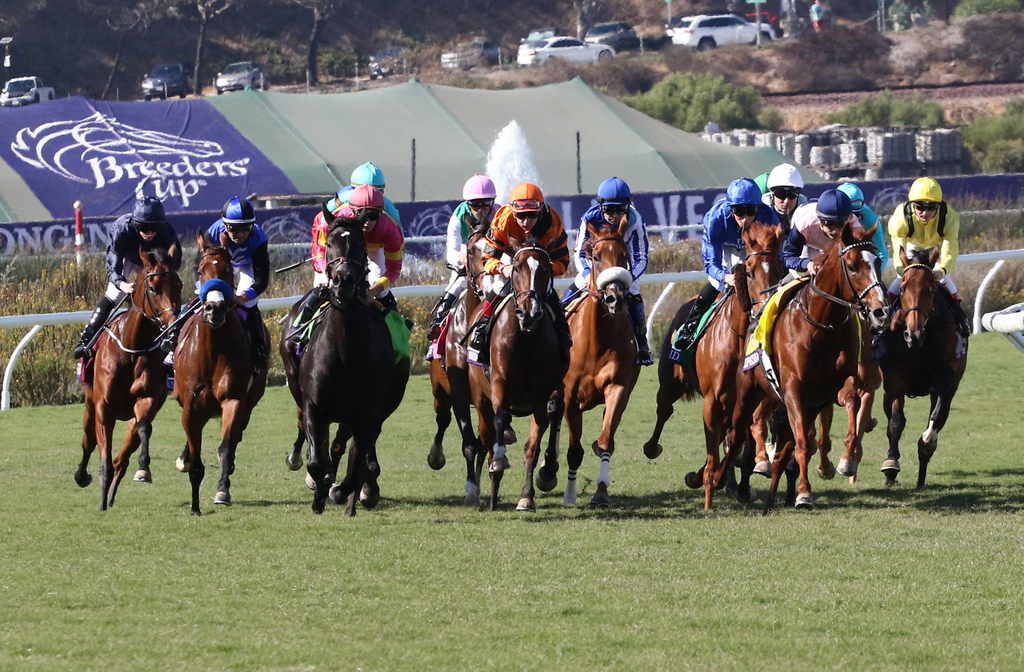 breeders cup 2020 results