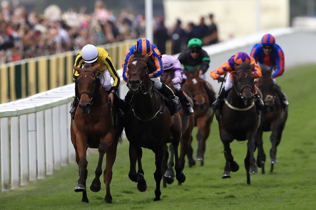 big orange order of st george ascot flat gold cup summer ryan moore james doyle