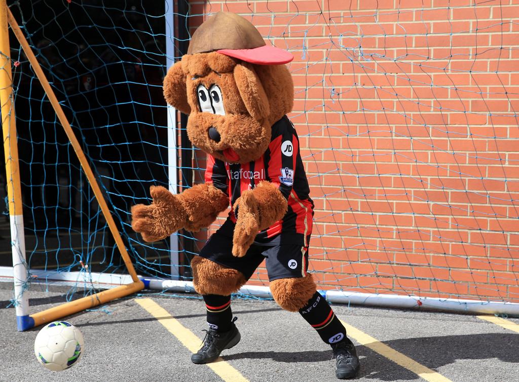Bournemouth Cherry Bear Mascot