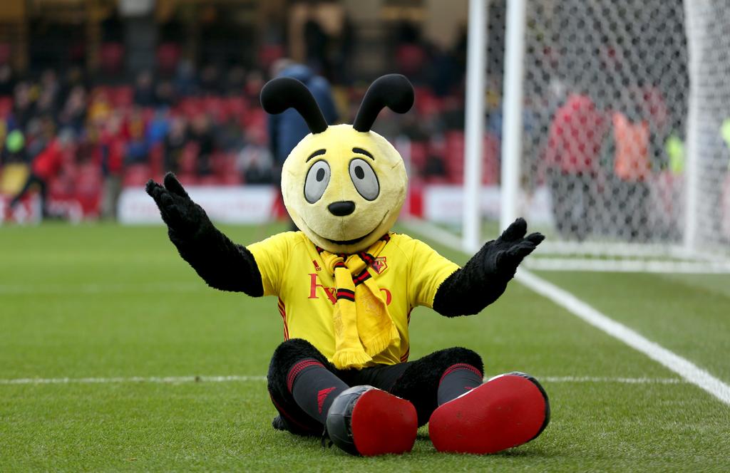 Watford Harry the Hornet Mascot