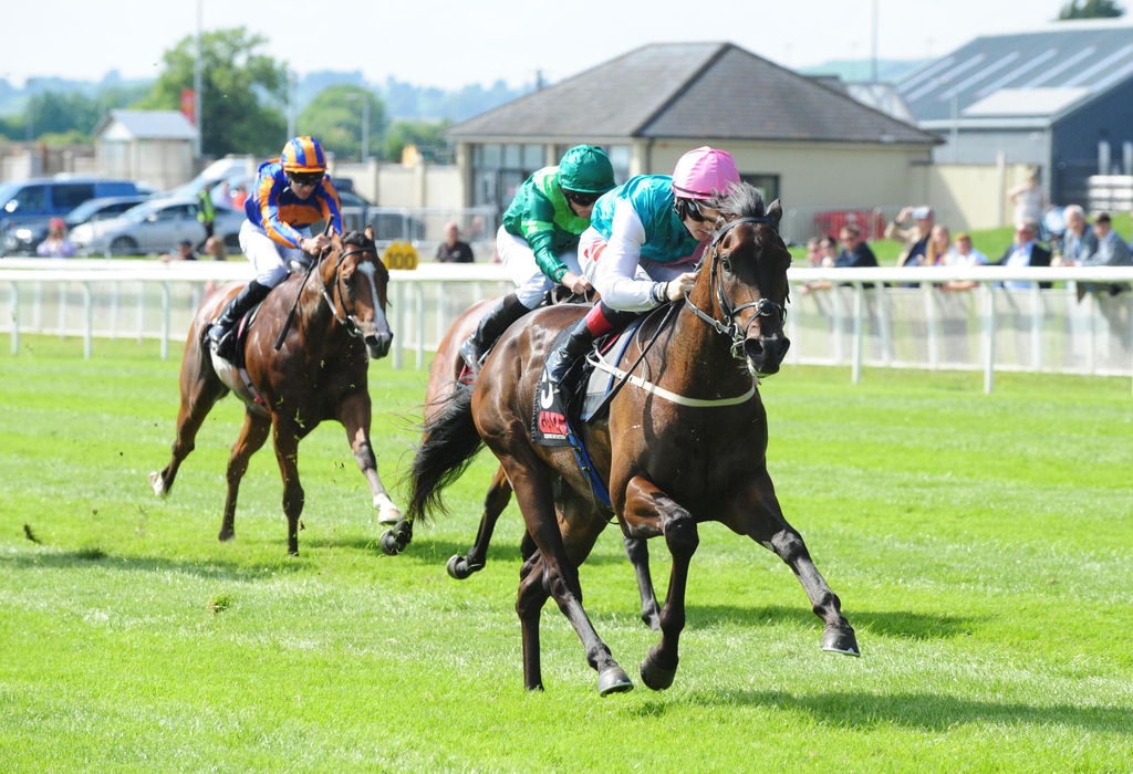 Qipco sussex stakes betting calculator irish cup match betting results