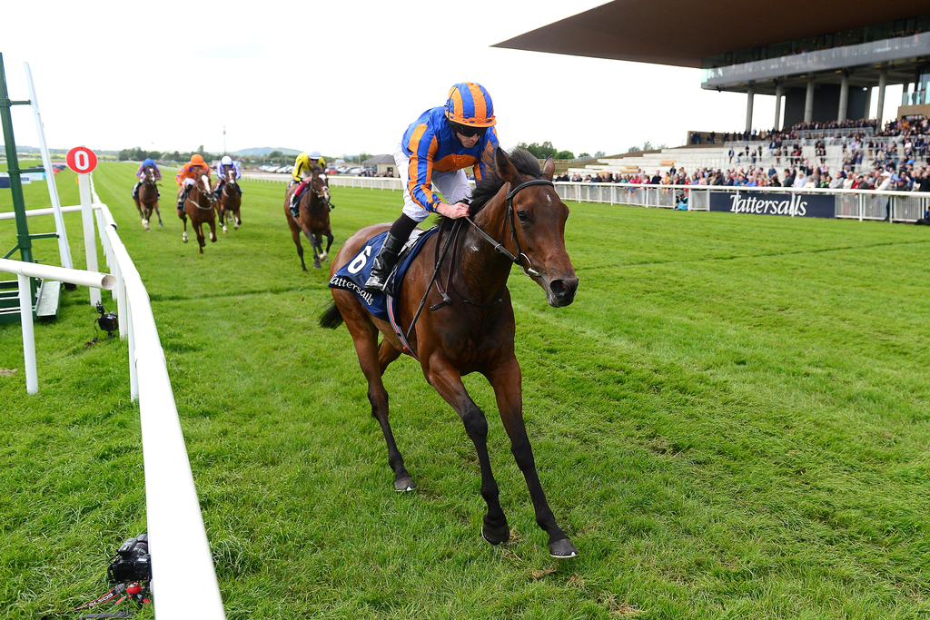 Coronation stakes 2021 betting lines bet on surfing