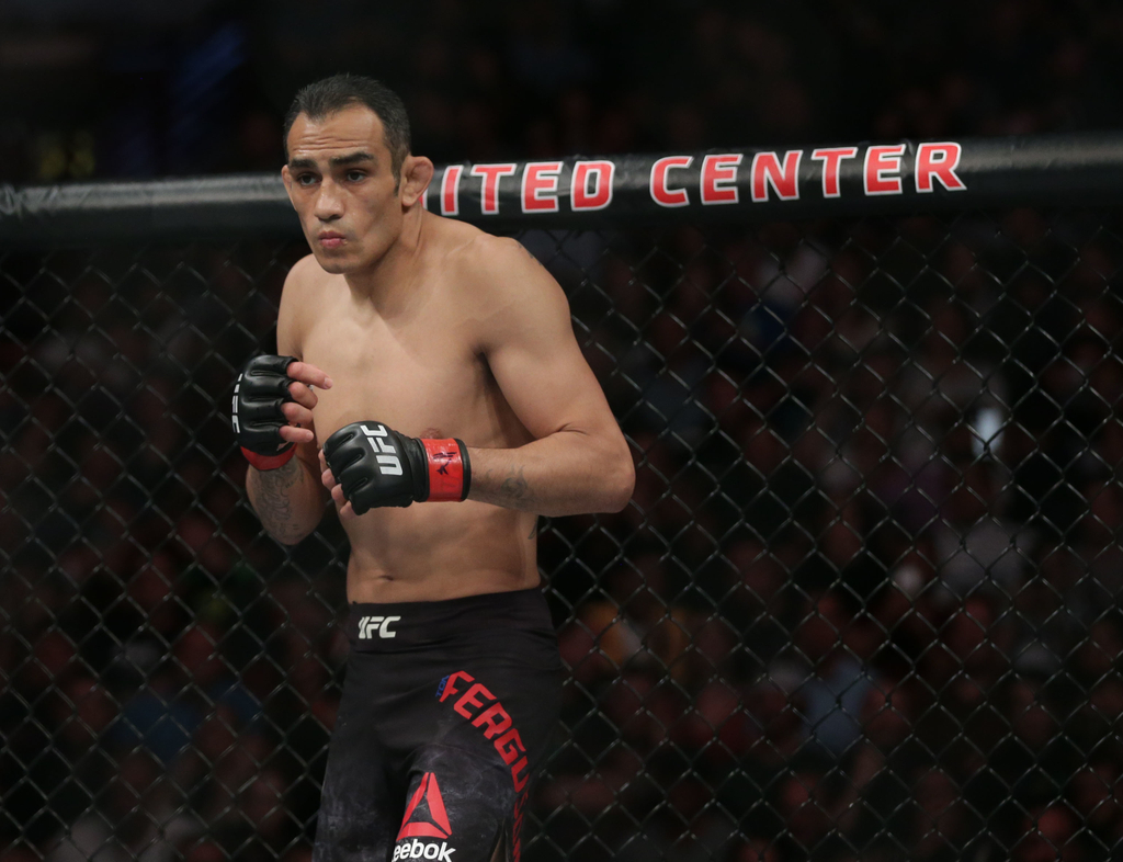 UFC 256 Betting Odds and Markets
