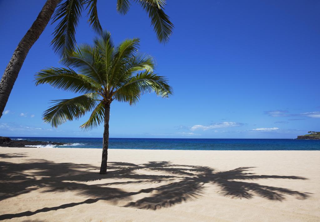 Love Island Beach