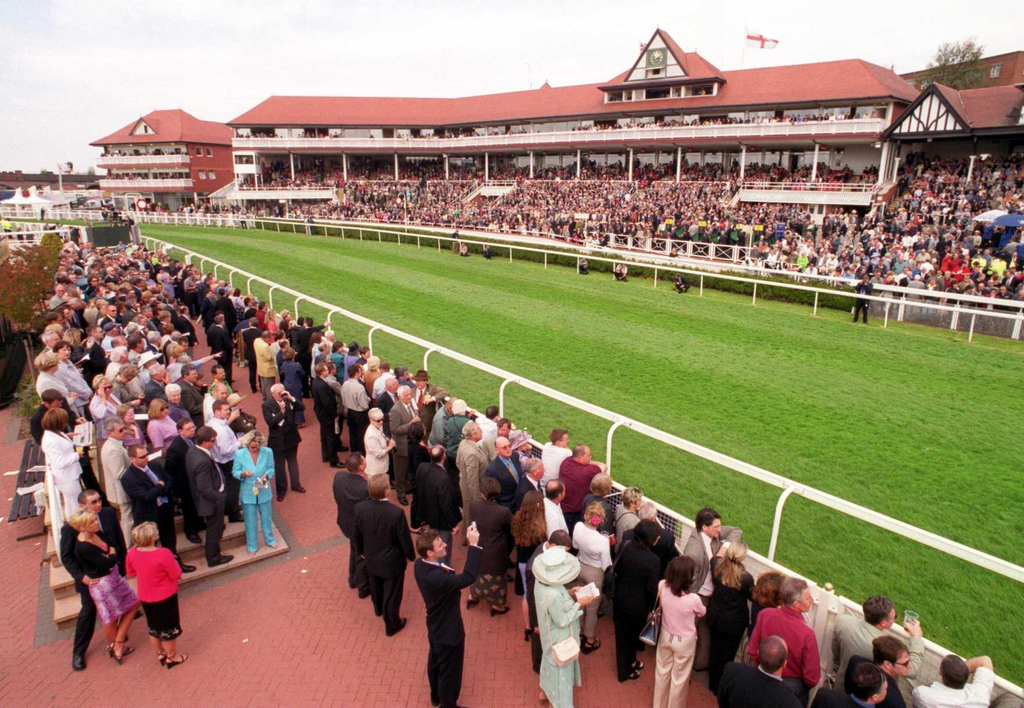 Chester races betting odds cryptocurrency documentary films