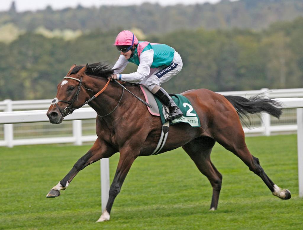 Frankel Foals racing