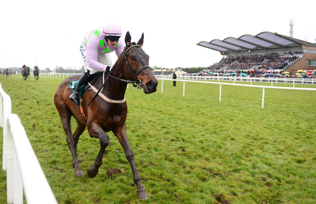 irish grand national