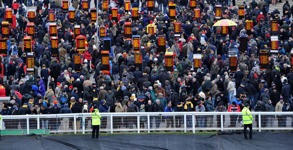 bookmakers betting at cheltenham festival