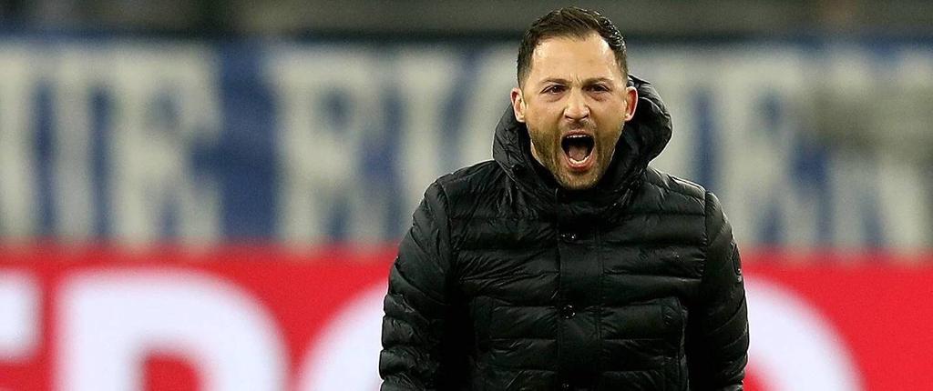 Domenico Tedesco Schalke Bundesliga