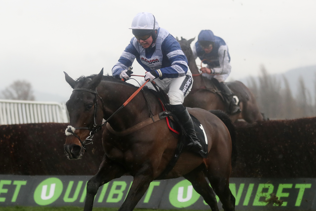frodon bryony frost fences cup